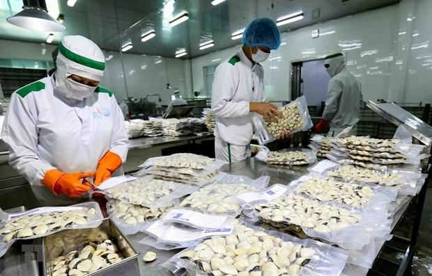 Provincia vietnamita exporta almejas a Europa hinh anh 1