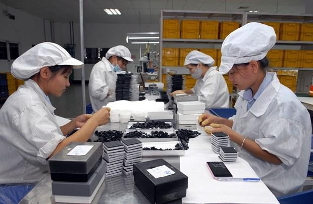 Ministerio de Industria y Comercio promulga Circular sobre normas de origen en el EVFTA hinh anh 1