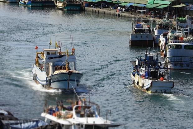 Crean grupo de trabajo sobre gestion pesquera en Oceano Indico hinh anh 1