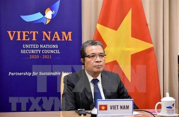 Vietnam respalda los esfuerzos de reiniciar el proceso de paz en Oriente Medio hinh anh 1