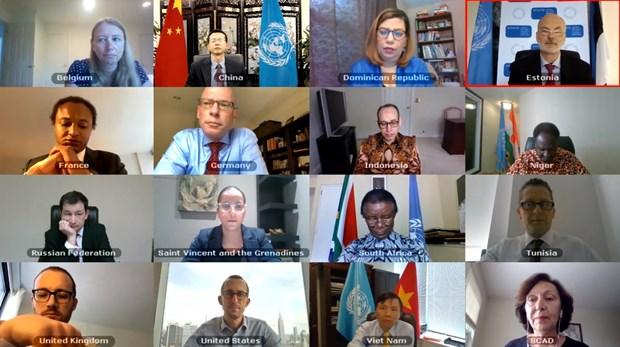Aprueba Consejo de Seguridad de la ONU resolucion elaborada por Vietnam hinh anh 1