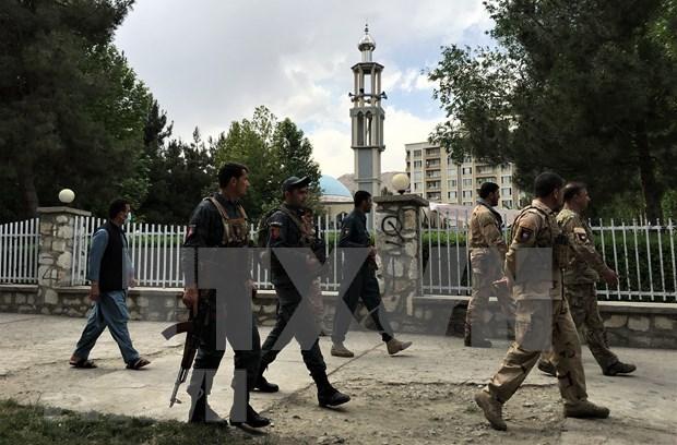 Vietnam respalda el proceso de paz en Afganistan hinh anh 1