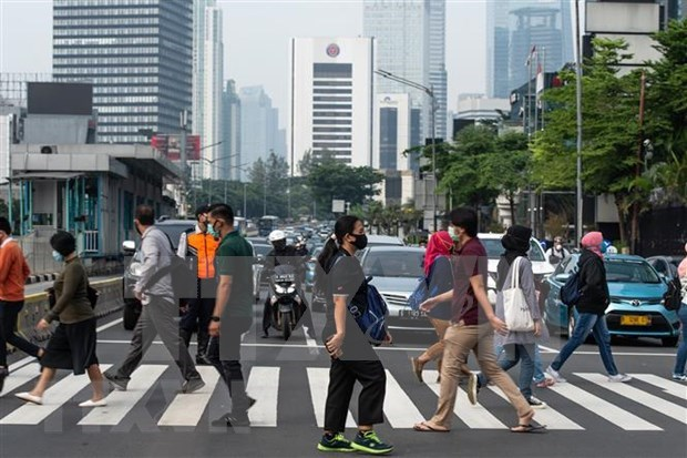 Funcionario indonesio valora a Vietnam como destino atractivo para la transferencia de IED hinh anh 1