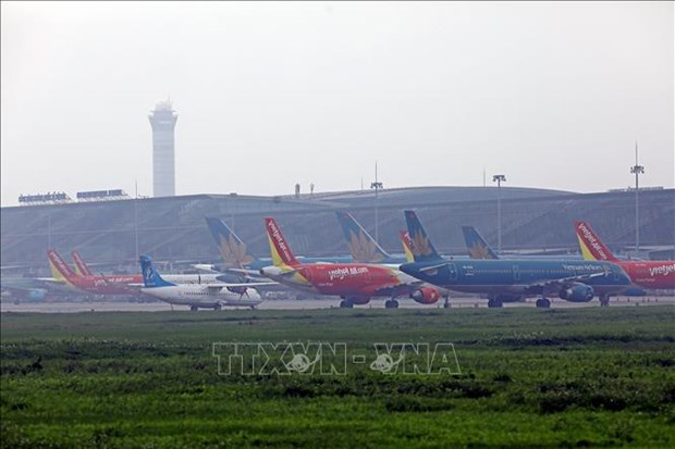 Aclara Vietnam informacion sobre pilotos extranjeros contratados en el pais hinh anh 1