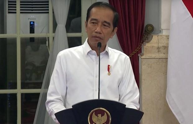 COVID-19: Indonesia busca acelerar desembolso de paquete presupuestario hinh anh 1