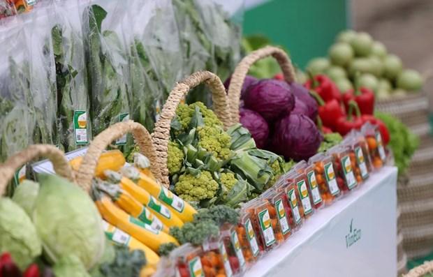 Indice de Precios al Consumidor en Ciudad Ho Chi Minh crece 0,66 por ciento en junio hinh anh 1