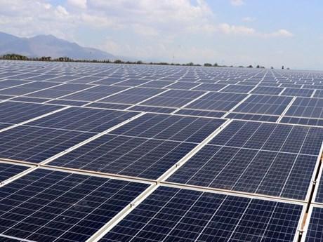 Planta de energia solar de Sharp entrara en operacion en Vietnam hinh anh 1