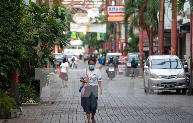 Registra Indonesia caida drastica de llegada de turistas extranjeros hinh anh 1