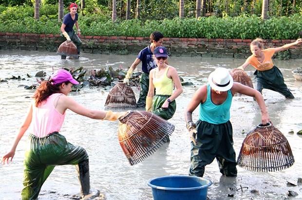 Provincia vietnamita de Quang Ninh apunta a desarrollar el turismo comunitario hinh anh 1
