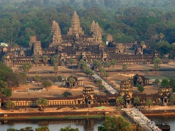 Estimula Camboya a desempleados a dedicarse a la agricultura hinh anh 1