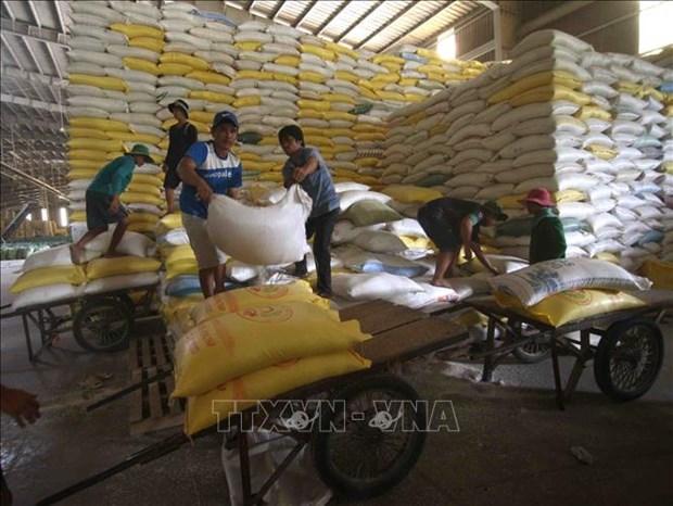 Prosigue tendencia alcista de las exportaciones vietnamitas de arroz hinh anh 1