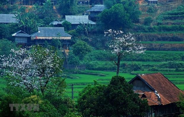 Provincia norvietnamita proyecta recibir mas de cinco millones de turistas en etapa 2021-2025 hinh anh 1