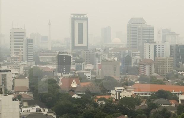 Indonesia se enfrasca en reducir emisiones de gases contaminantes hinh anh 1