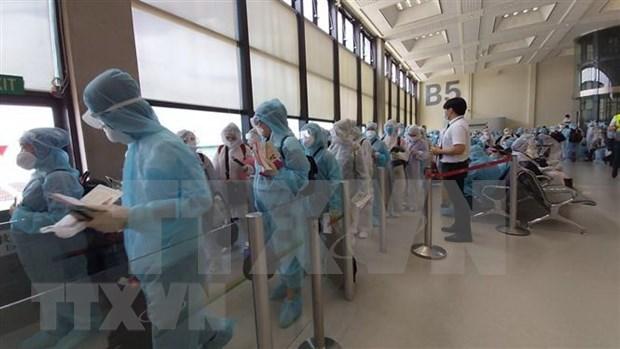 Repatrian a mas de 200 ciudadanos vietnamitas desde Taiwan (China) hinh anh 1