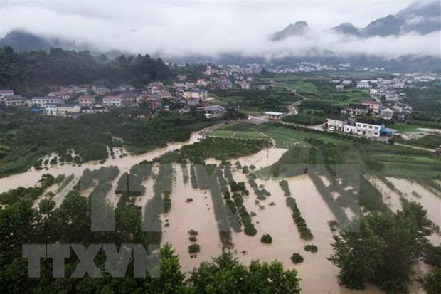 Expresa Vietnam simpatia con China por secuelas de inundaciones hinh anh 1