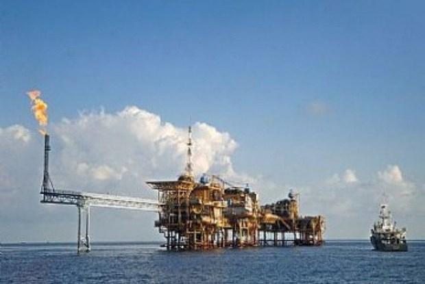 Shell planea salir del proyecto multimillonario en Indonesia hinh anh 1