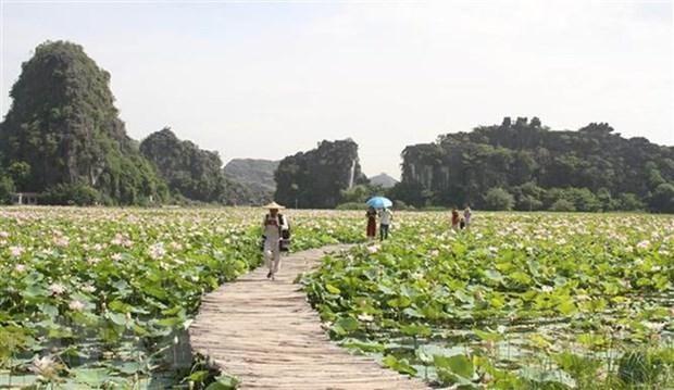 Vietnam busca intensificar medidas para promover el turismo domestico hinh anh 1