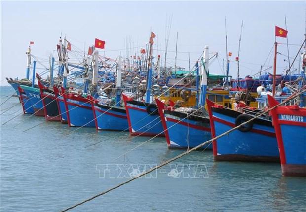 Vietnam se esfuerza para luchar contra pesca ilegal, afirmo Foreign Affair Asia hinh anh 1