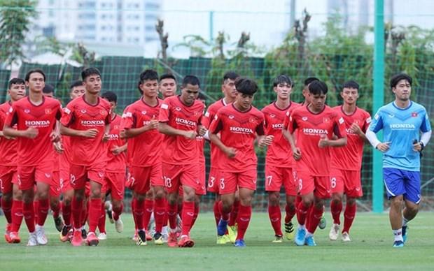 Seleccion de futbol de Vietnam participara en el Torneo de Tolon en Francia hinh anh 1