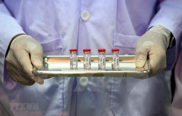 Tailandia probara vacuna contra COVID-19 en humanos hinh anh 1