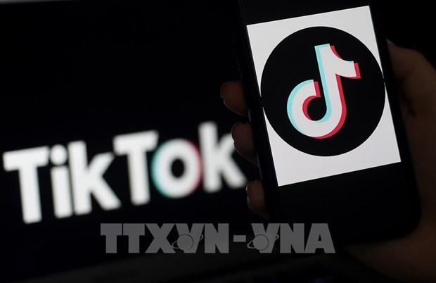 TikTok participa en digitalizacion de pequenas y medianas empresas indonesias hinh anh 1