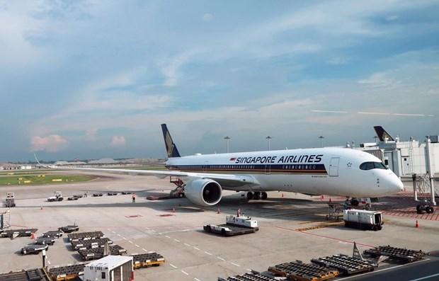 Aerolinea de Singapur aumentara frecuencia de vuelos en agosto hinh anh 1