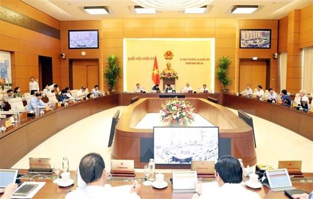 Diputados debaten garantia de derechos para trabajadores vietnamitas enviados al exterior hinh anh 1