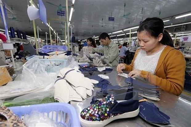 EVFTA: nuevo motor de crecimiento para la industria del cuero y calzado hinh anh 1