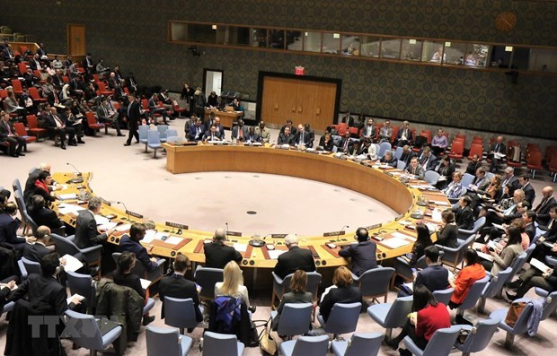 Alaban aportes de Vietnam a labores de Consejo de Seguridad hinh anh 1