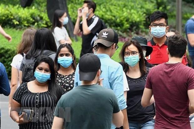 Malasia y Singapur reabriran la frontera comun en agosto hinh anh 1