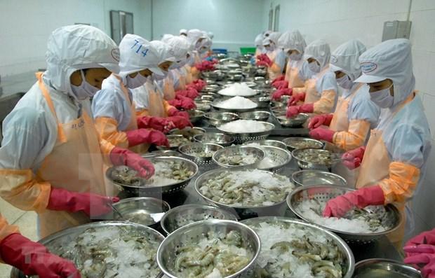 Provincia vietnamita de Ca Mau por recuperar produccion y exportacion de mariscos hinh anh 1