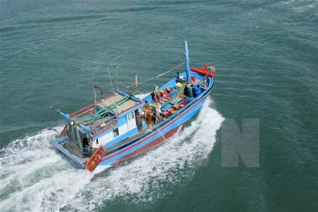 Provincia vietnamita evita que buques violen normas de pesca hinh anh 1