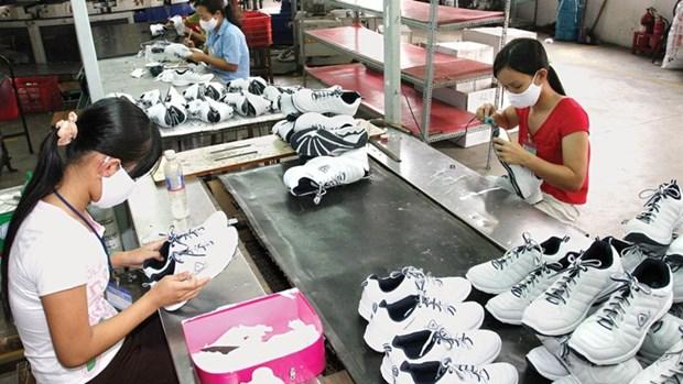 Promueven cooperacion entre empresas deportivas de Vietnam y los Paises Bajos hinh anh 1