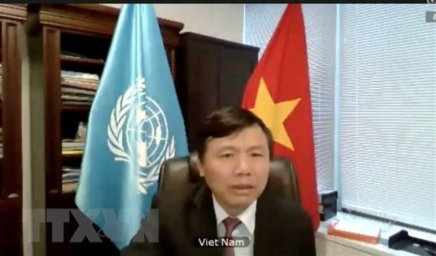 Vietnam reitera apoyo a verificacion de la paz en Colombia hinh anh 1