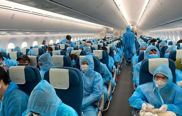 Alertan sobre ofertas fraudulentas en boletos aereos de regreso a Vietnam hinh anh 1