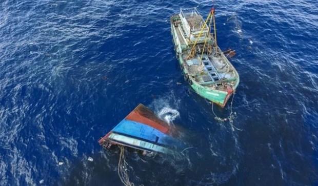 Indonesia cambia politicas de manejo de barcos extranjeros detenidos por pesca ilegal hinh anh 1