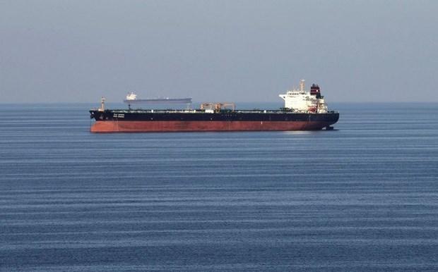 Vietnam llama a los huties en Yemen a cooperar con la ONU sobre petrolero abandonado hinh anh 1