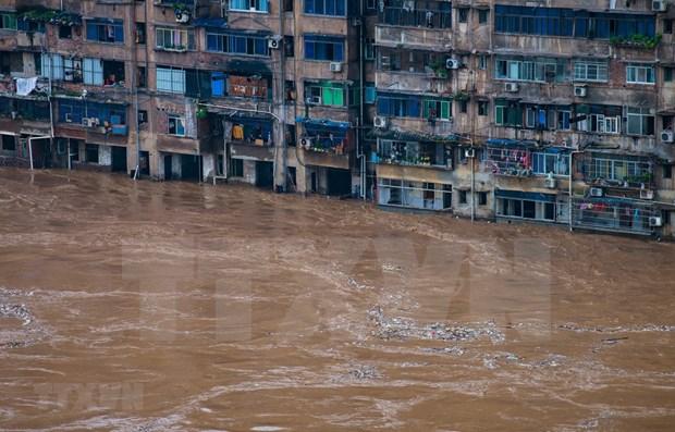 ASEAN expresa solidaridad con China ante severas inundaciones hinh anh 1