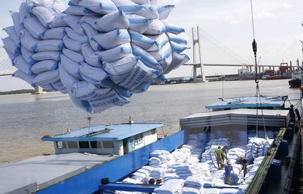 Subrayan en Vietnam aprovechamiento de TLC en nuevo periodo de integracion economica hinh anh 1