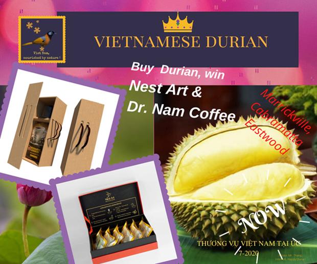 Durian vietnamita conquista a consumidores en Australia hinh anh 1