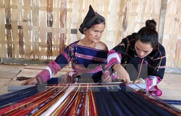 Expertos de Francia y Vietnam analizaran periodo historico de la etnia Bahnar hinh anh 1