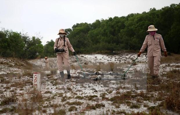 Impulsa provincia vietnamita actividades de remocion de bombas y minas hinh anh 1