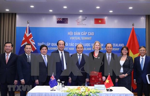 Asociacion estrategica Vietnam-Nueva Zelanda abrira nuevas oportunidades, segun expertos hinh anh 1