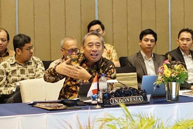 Embajador indonesio valora aportes de Vietnam al impulso de la cooperacion regional hinh anh 1