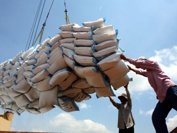 Vietnam puede superar a Tailandia como tercer exportador mundial de arroz, segun expertos hinh anh 1