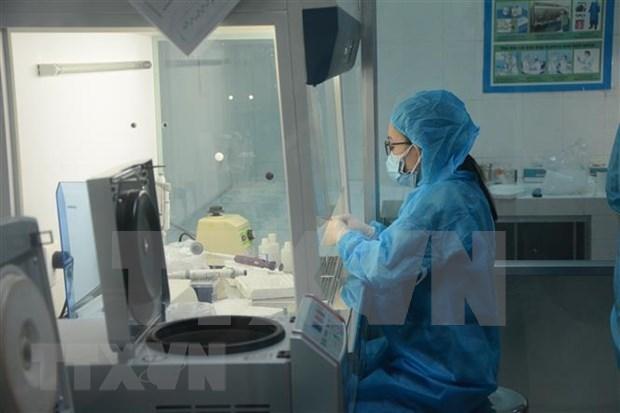 Ciudad vietnamita de Da Nang tomara 10 mil pruebas de COVID-19 en la comunidad hinh anh 1