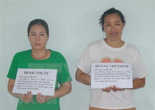 Detienen a dos sujetos involucrados en red de transporte de inmigrantes ilegales a Vietnam hinh anh 1