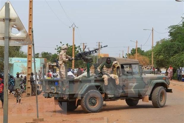 Vietnam afirma su apoyo a independencia, soberania e integridad territorial de Mali hinh anh 1
