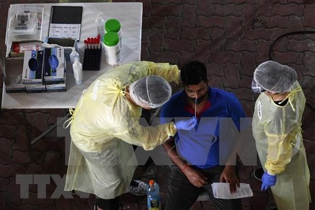 Singapur descubre metodo de prueba rapido del virus SARS-CoV-2 hinh anh 1