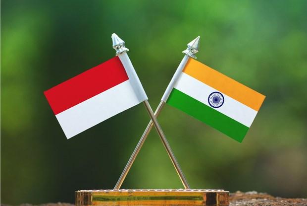 India e Indonesia fortalecen cooperacion en defensa-seguridad hinh anh 1